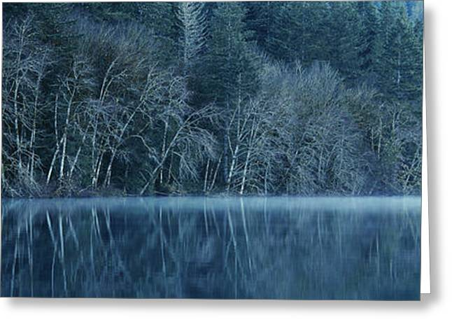 Forest Reflecting Into Lake Crescent Greeting Card