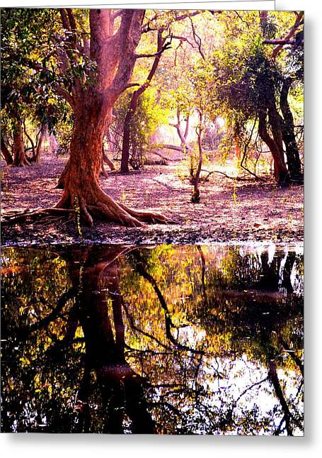Forest Reflection Greeting Card by Deepti Chahar