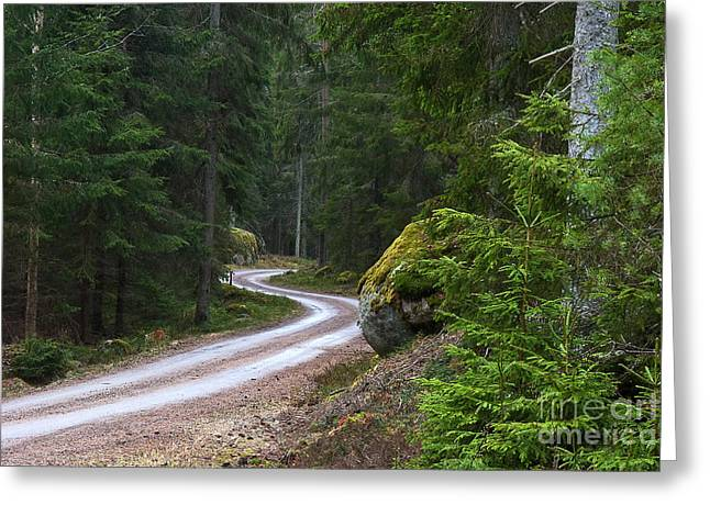 Greeting Card featuring the photograph Forest Road by Kennerth and Birgitta Kullman