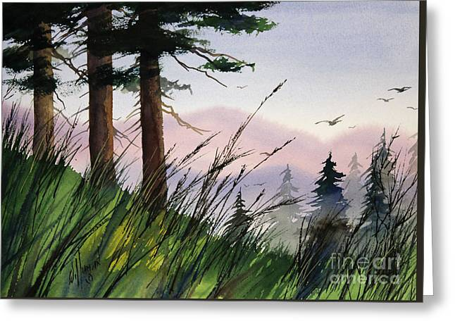 Forest Splendor Greeting Card by James Williamson