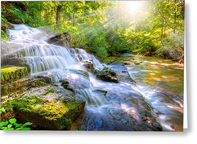 Forest Stream And Waterfall Greeting Card