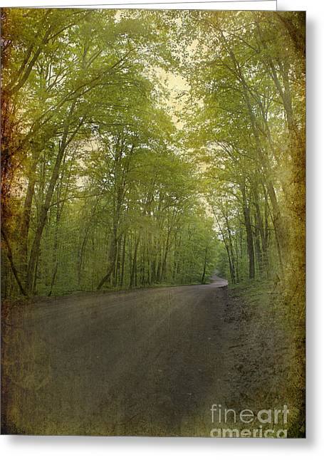 Forest Tranquility... Greeting Card by Nina Stavlund