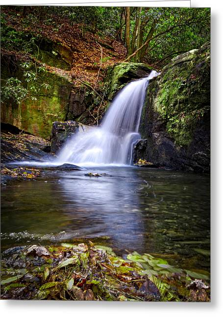 Forest Waterfall Greeting Card by Debra and Dave Vanderlaan
