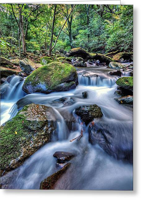Greeting Card featuring the photograph Forest Waterfall by John Swartz