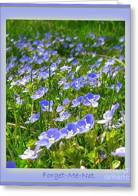 Forget Me Not Greeting Card by Leone Lund