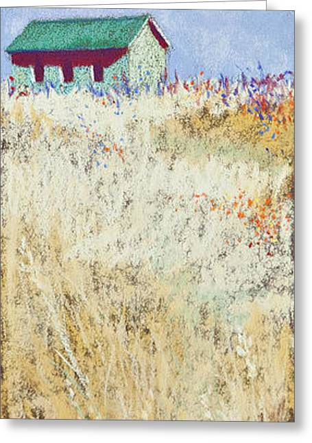 Forgotten Countryside Greeting Card by Tracy L Teeter