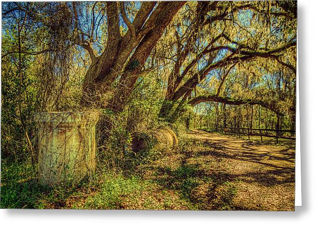 Forgotten Under The Oaks Greeting Card
