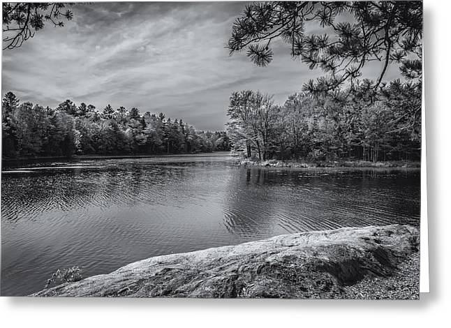 Fork In River Bw Greeting Card