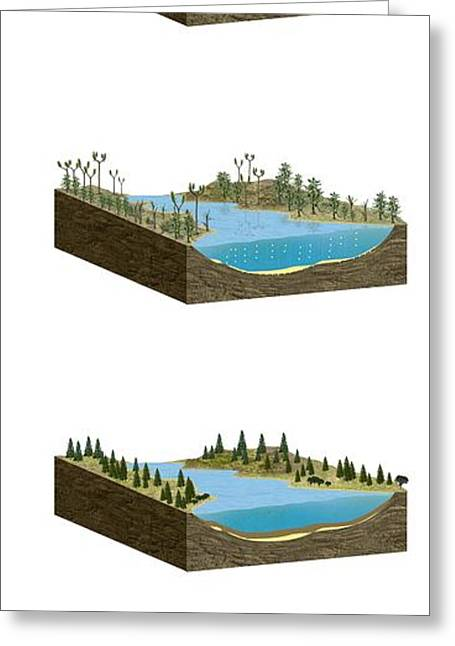 Formation Of Fossil Fuels, Artwork Greeting Card by Claus Lunau