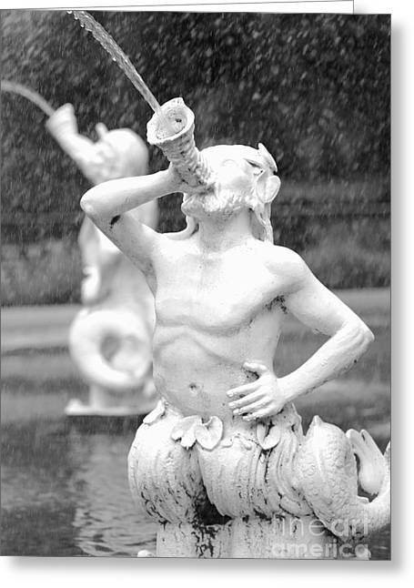 Forsyth Park Fountain - Black And White 1 2x3 Greeting Card by Carol Groenen
