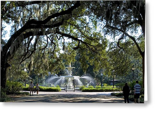 Forsythe Park Greeting Card by Diana Powell