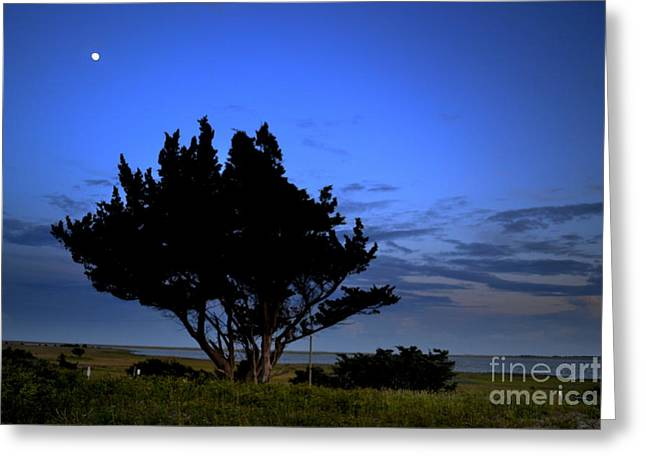 Fort Fisher Moonrise  Greeting Card