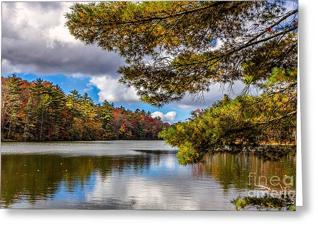 Fort Mountain State Park Lake Trail Greeting Card by Bernd Laeschke