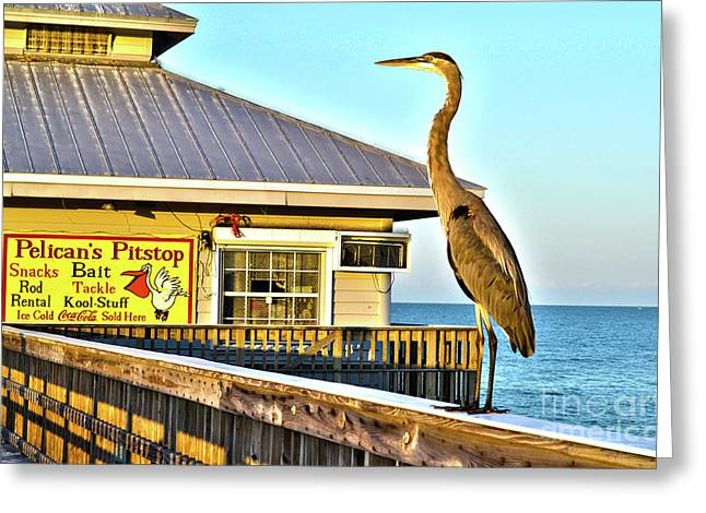 Fort Myers Beach Bird On Pier Greeting Card