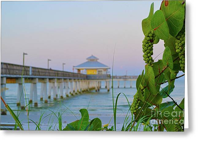 Fort Myers Beach Pier Greeting Card by Timothy Lowry