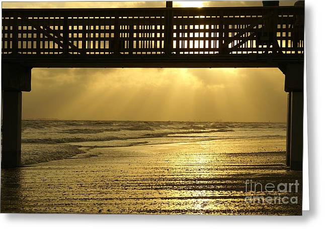 Fort Myers Golden Sunset Greeting Card