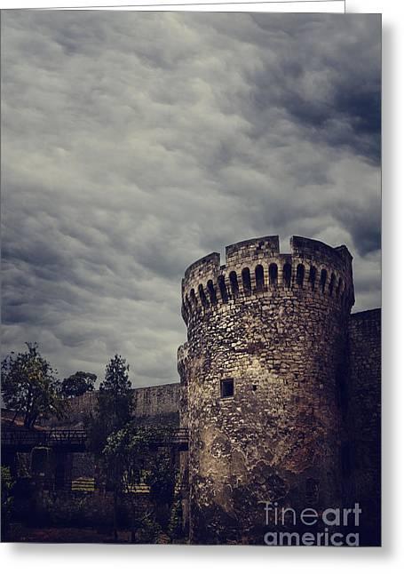 Fortress Greeting Card by Jelena Jovanovic