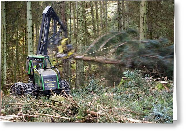 Forwarder Forestry Vehicle Greeting Card by Ashley Cooper