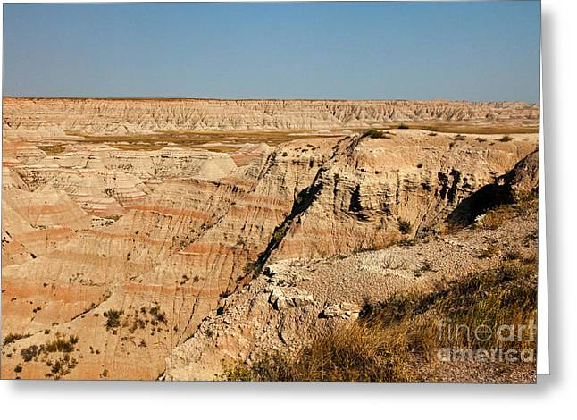 Fossil Exhibit Trail Badlands National Park Greeting Card