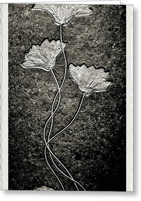 Fossilized Flowers Greeting Card by Dan Sproul