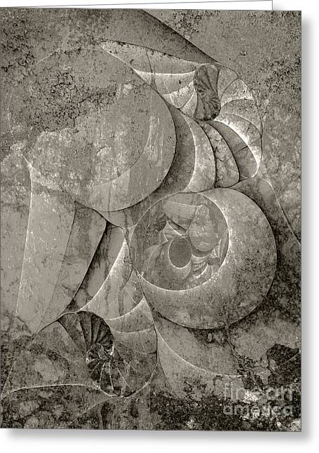 Fossilized Shell - B And W Greeting Card