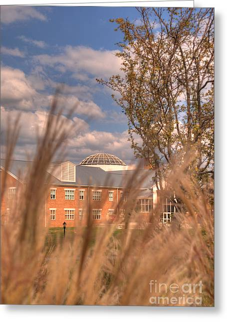 Founders Hall Through The Grasses Greeting Card by Mark Dodd