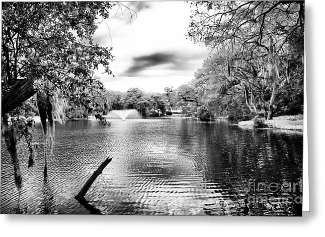 Fountain In The Pond Greeting Card by John Rizzuto