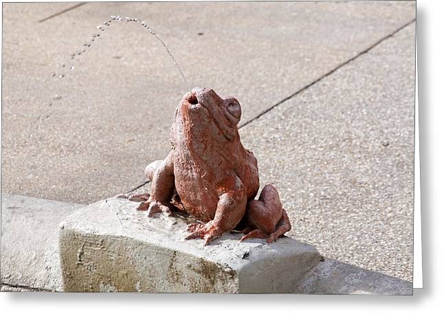 Fountain Spitting Frog Greeting Card by Kenneth Albin