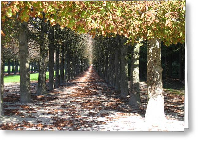 Fountainebleau - Under The Trees Greeting Card