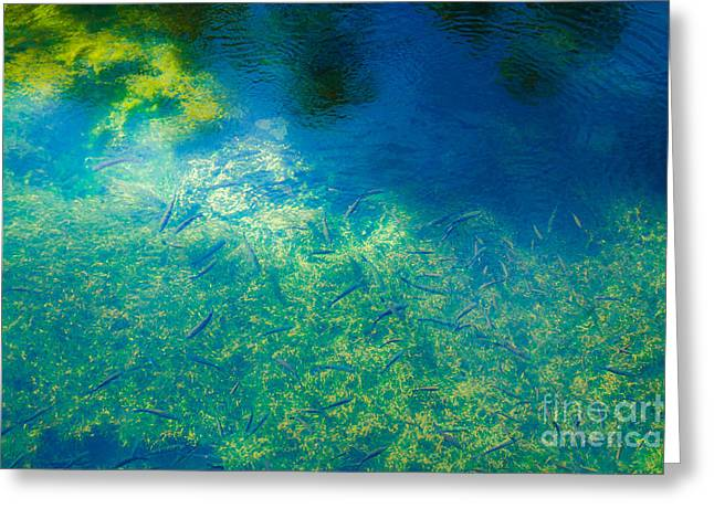 Fountain's Depth And Reflection Greeting Card by Nabucodonosor Perez