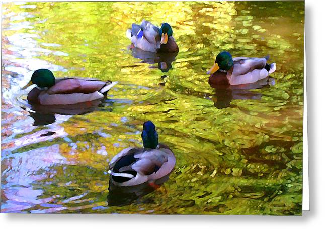 Four Ducks On Pond Greeting Card by Amy Vangsgard