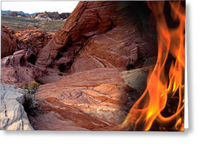 Four Elements Greeting Card by Panoramic Images