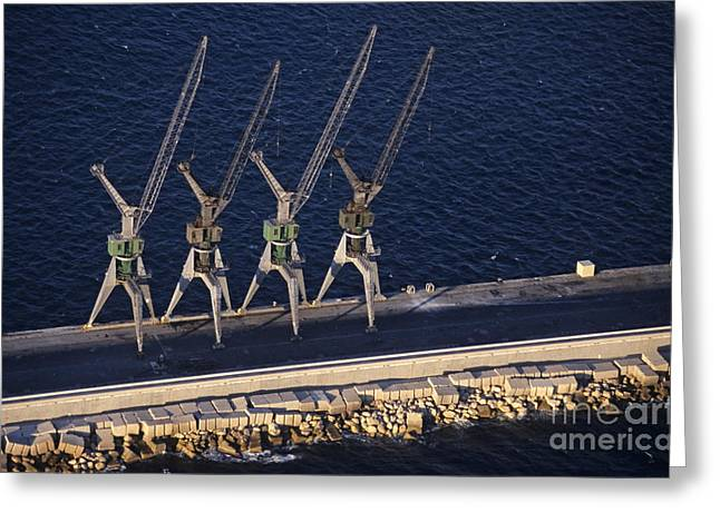 Four Harbour Cranes On Dike Greeting Card by Sami Sarkis