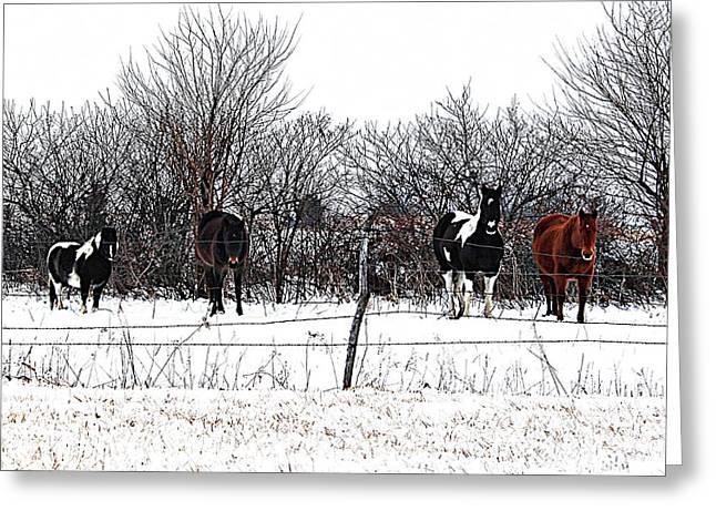 Four Horses Greeting Card by Karen McKenzie McAdoo