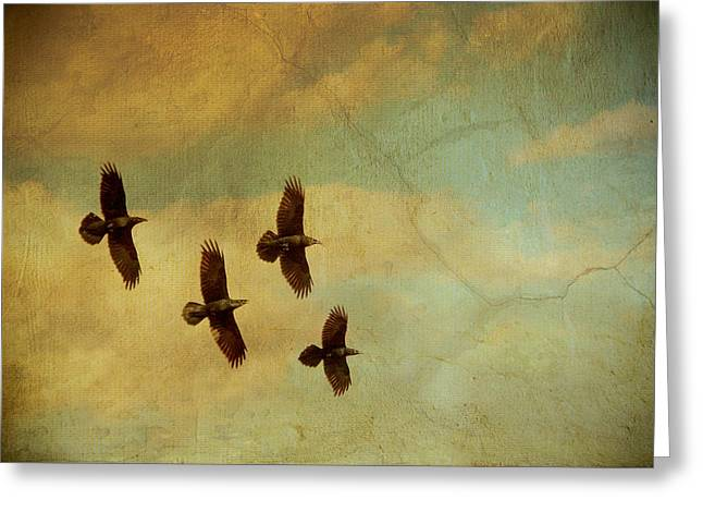 Greeting Card featuring the photograph Four Ravens Flying by Peggy Collins