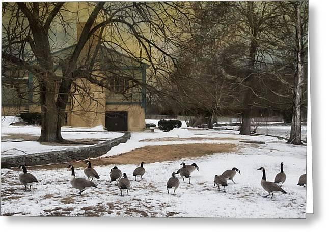 Fowl Weather Greeting Card