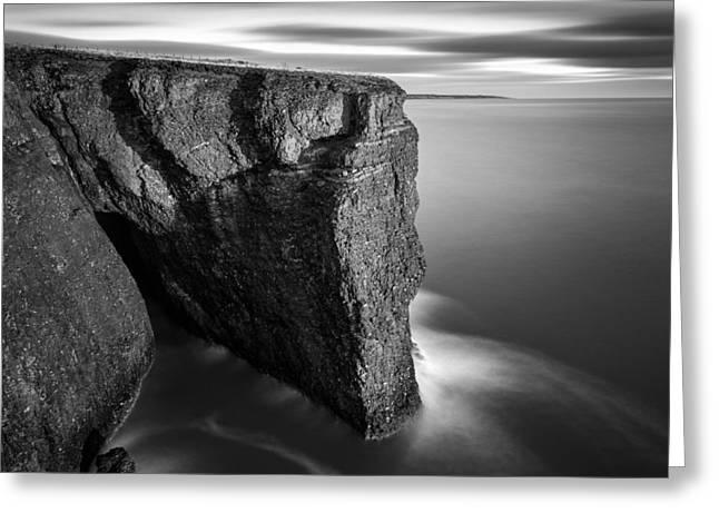Fowlsheugh Cliffs Greeting Card by Dave Bowman