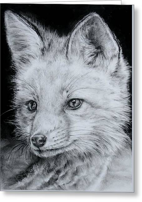 Fox Kit Greeting Card by Jean Cormier