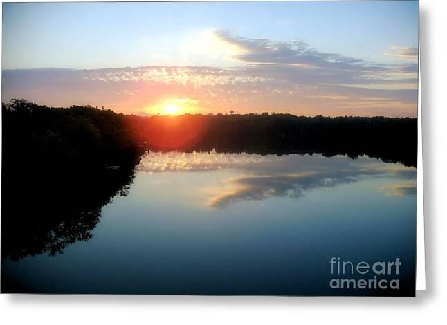 Fox River Greeting Card by Michael Creamer