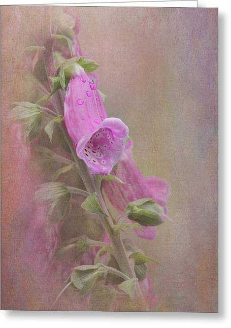Foxglove Greeting Card by Angie Vogel