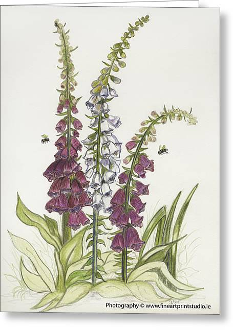 Foxgloves And Bees Greeting Card by Gemma Best
