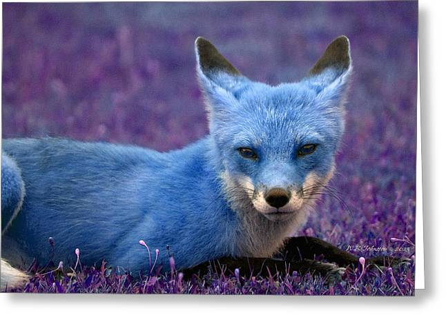 Greeting Card featuring the photograph Foxy Lady's Got The Blues by WB Johnston