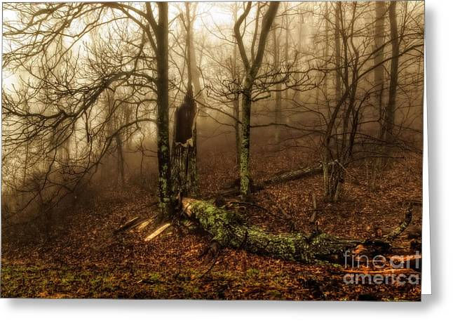 Fractured In Fog Greeting Card