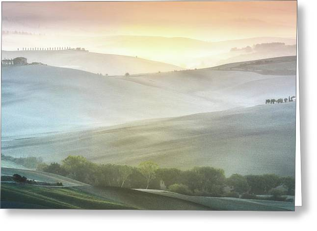 Fragile Sunrise Greeting Card
