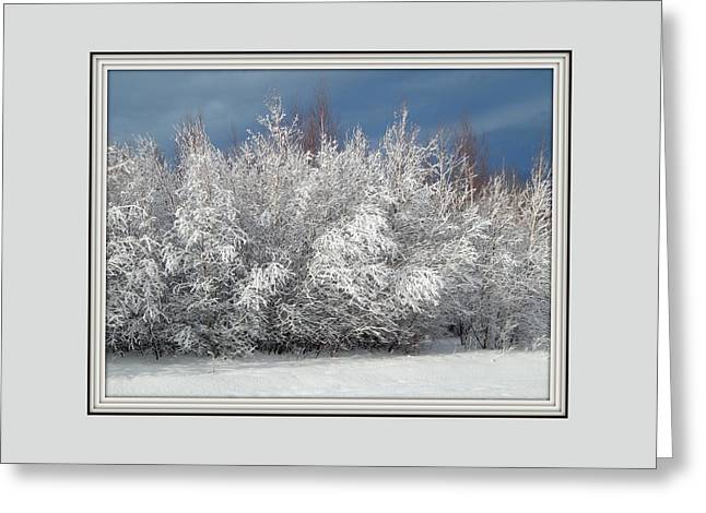 Framed By Frost Greeting Card