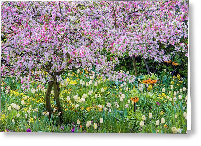 France, Giverny Springtime In Claude Greeting Card