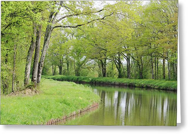 France, Loire Spring Trees And Grasses Greeting Card by Kevin Oke