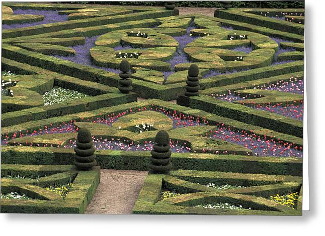 France Villandry Greeting Card by Anonymous