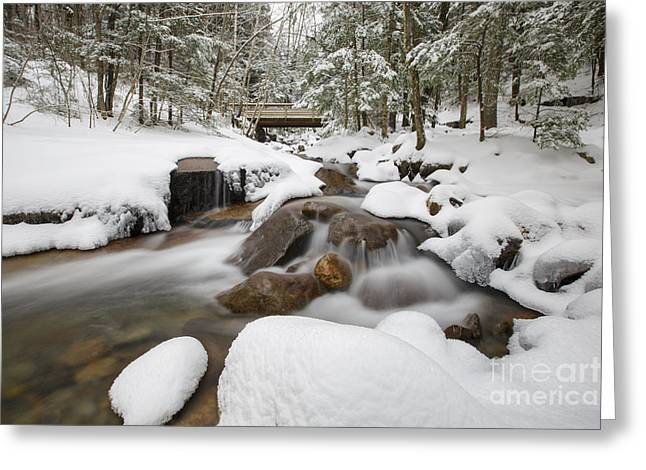 Franconia Notch State Park - White Mountains New Hampshire Usa - Flume Gorge Greeting Card by Erin Paul Donovan