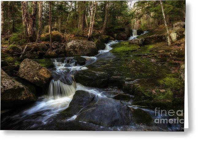 Franey Falls Greeting Card by Nancy Dempsey